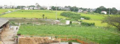「松川牧場」の画像検索結果